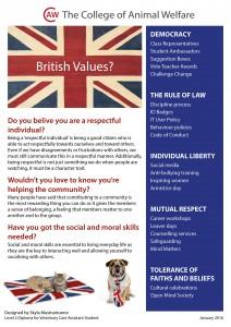 British Values Winning Poster