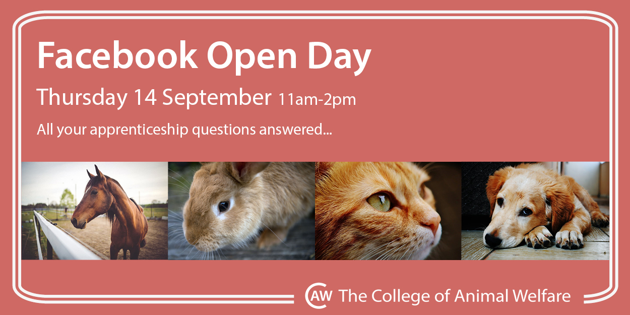 animal care apprenticeships facebook open day image