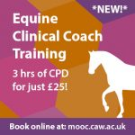 Online Equine Clinical Coach Training