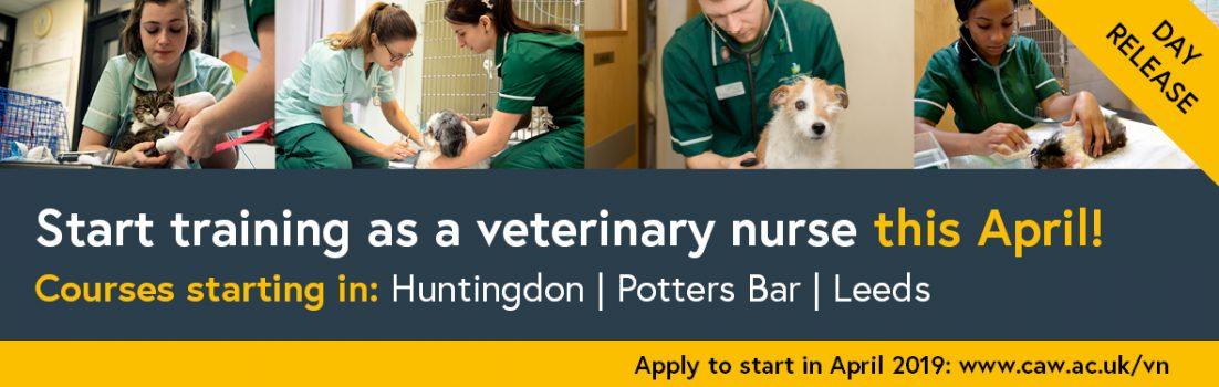 Veterinary nursing April 2019 website advert