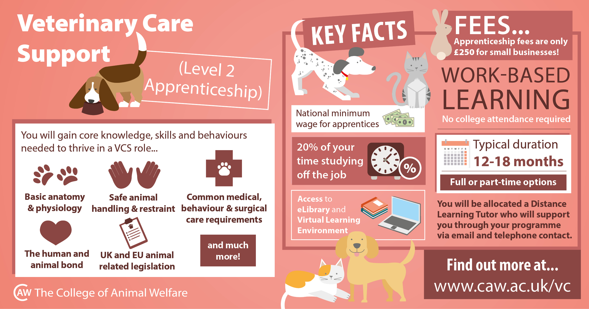 veterinary care support apprenticeship infographic