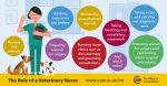Veterinary nursing career information