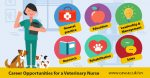 veterinary nursing career opportunities