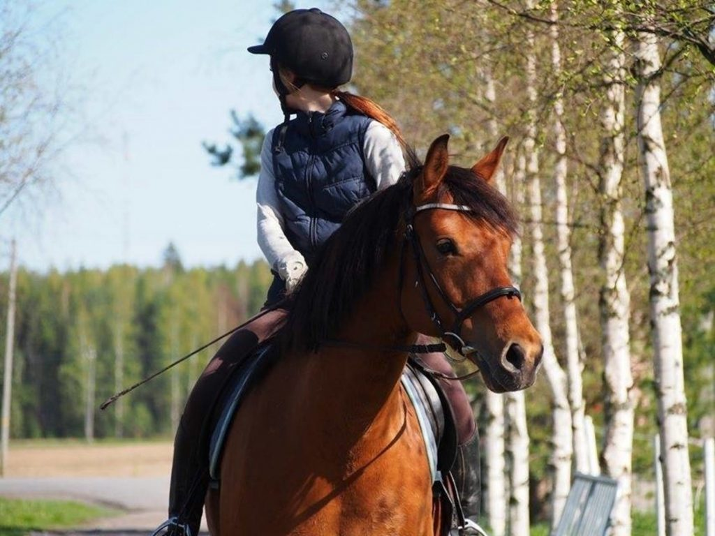 Horse Riding Instructor Career Profile
