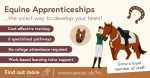 Equine Apprenticeships for Employers